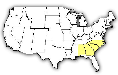 Map of US states the Carolina Pygmy Rattlesnake is found in.