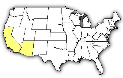 Map of US states the Colorado Desert Sidewinder is found in.