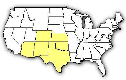 Map of US states the Desert Massasauga is found in.