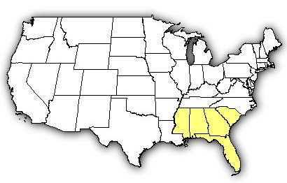 Map of US states the Dusky Pygmy Rattlesnake is found in.