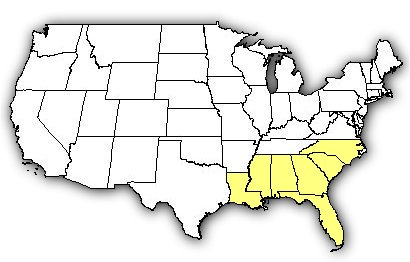 Map of US states the Eastern Diamondback Rattlesnake is found in.