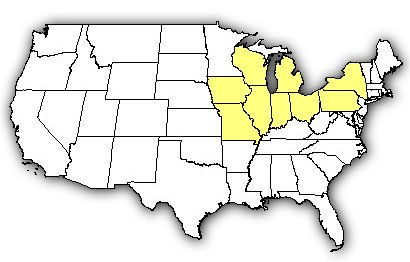 Map of US states the Eastern Massasauga is found in.