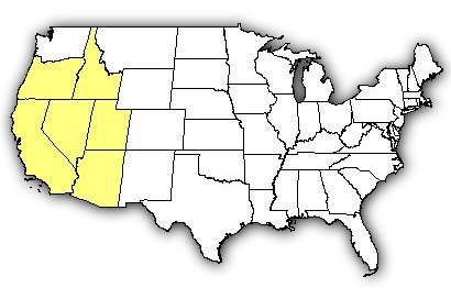 Map of US states the Great Basin Rattlesnake is found in.