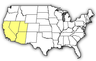 Map of US states the Mojave Desert Sidewinder is found in.