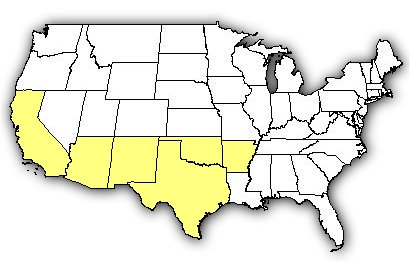 Map of US states the Western Diamondback Rattlesnake is found in.