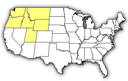 Map of US states the Hobo Spider is found in.